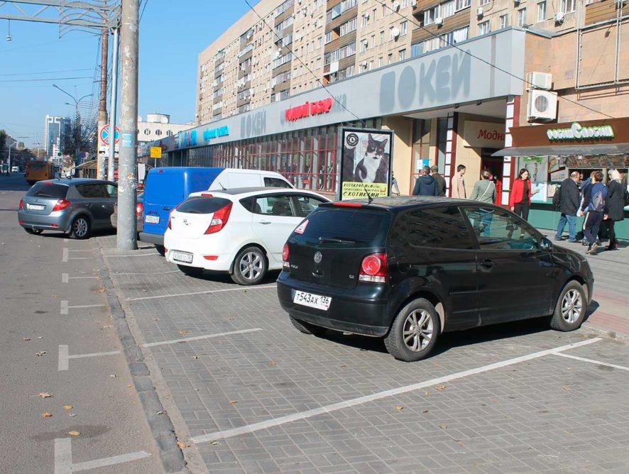 Четыре адвоката из-за 3 тыс рублей. Воронежцы начали обжаловать штрафы за парковку