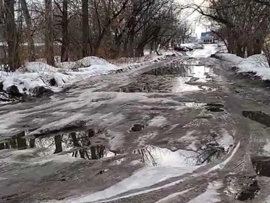 Вадим Кстенин озаботился дорогами к воронежским кладбищам