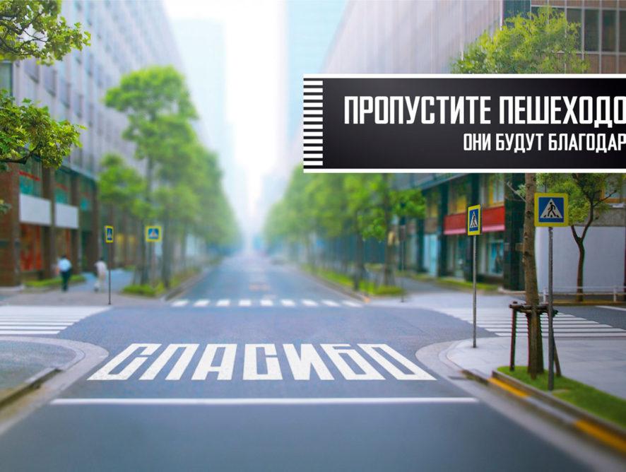 В Воронеже ввели мораторий на ликвидацию 12 пешеходных переходов