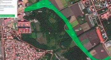 Публичные слушания по строительству дороги «Шишкова-Тимирязева» установили рекорд в Воронеже