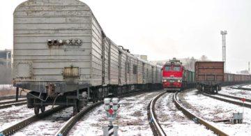 Введены новые правила перевозки скоропортящихся грузов