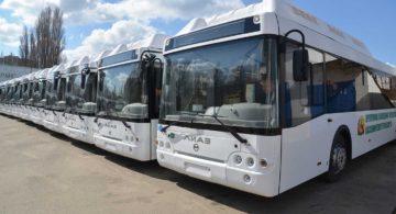 Власти Воронежа сэкономят более 450 млн рублей при закупке 62 автобусов по нацпроекту